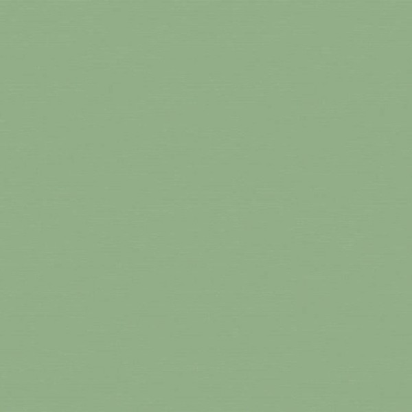 Baumwolle Uni grün